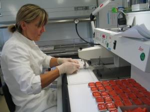 Laboratorio de biología. | Rosa M. Tristán