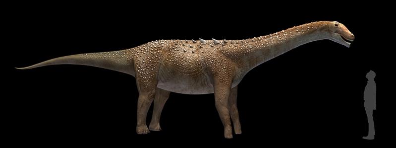Titanosaurio de Lo Hueco. |Plos ONE