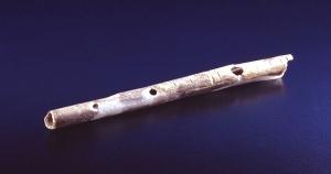 Flauta radio de un cisne. |H. Jensen. Universidad de Tubinga