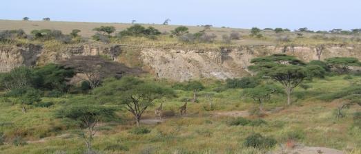 Vista de los yacimientos de la Garganta de Olduvai, por la mañaña.|ROSA M. TRISTÁN