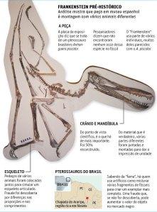 Gráfico del pterosaurio del Museo Cosmocaixa. |Folha de S. Paulo