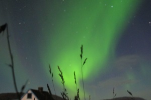 Aurora boreal en Tassiusaq, Groenlandia. |R.M.T.