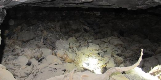 Acumulación de momias de ibis y halcones, en su lugar original.|ROSA M. TRISTÁN