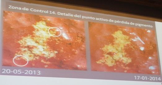 Detalle de la pérdida de pigmento en 8 meses.