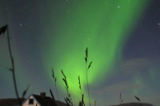 No será la mejor foto de auroras que has visto, pero así la ví con mi cámara en Groenlandia.|ROSA M. TRISTÁN