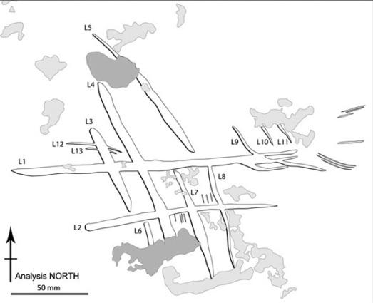 Grabado neandertal en la cueva de Gorham. |PNAS