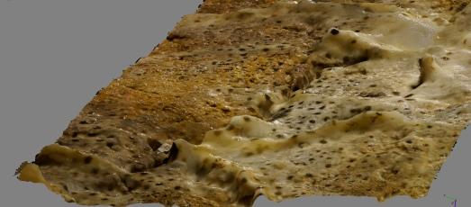 Bacterias en Altamira, captadas para ver con gagas en 3D.|ASFIMAGEN