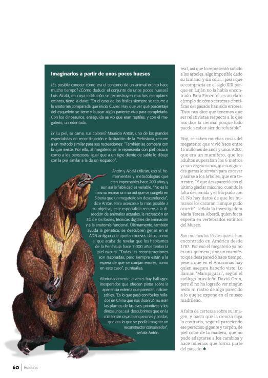 estratos_107_59_61-page-003
