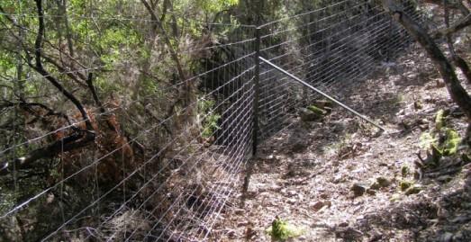 Vallado en el coto de caza de Alberto Cortina dentro del Parque Nacional de Cabañeros, denunciada por Ecologistas en Acción .