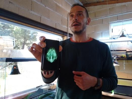 Fernando Blanca muestra una radiografía de un galápago europeo. Es hembra, y ¡tiene un montón de huevos! @R.M.T.