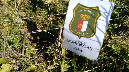 Lazo denunciado por agentes forestales de Toledo. Estrangulan a los animales.
