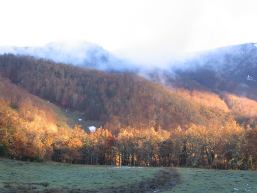 Invernal otoño 20050002