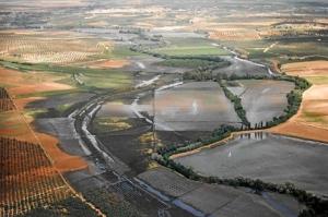 Y así quedó el río Guadiamar, tras el derrame de 1998.