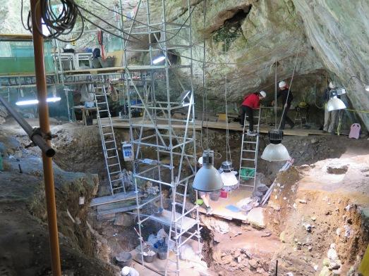 El laberinto de andamios en El Portalón de Cueva Mayor. |@RosaMTristán