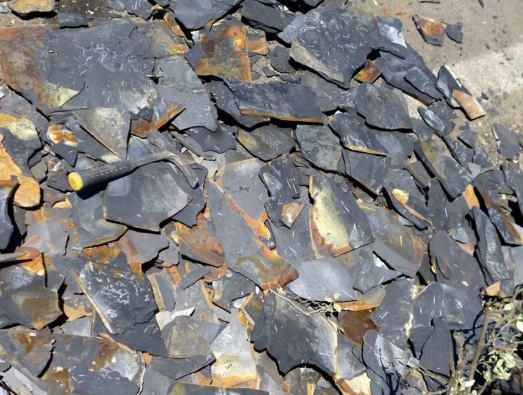 Fósiles destrozados en Salas de la Ribera. |J.C. G-M.