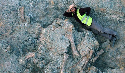 Lohuecotitan excava2