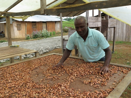 En Colombia hay una gran variedad de cacao. @RosaTristán